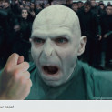 Master Chief Ends Voldemort's reign of terror: Alternate Harry Potter Ending. (spoiler)